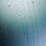 加湿器による結露防止・予防法、湿度の適正値は?